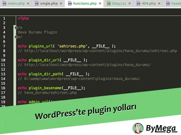 Wordpress'te plugin yolları